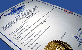 Company formation services - Documents Certification by Notary Public & Apostille